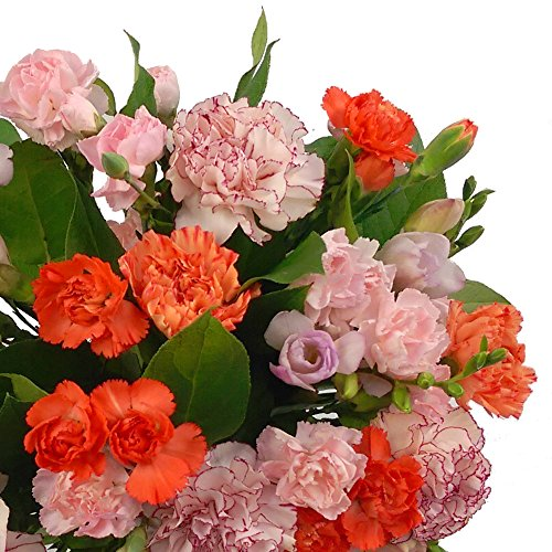 Freesia carnation fresh flowers bouquet with free chocolates freesia carnation fresh flowers mightylinksfo