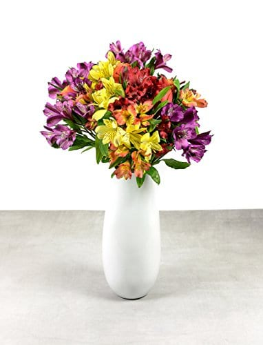 Uplifting Colourful Bouquet With FREE Delivery Handwritten Greeting Card Send Premium Fresh Flowers Delivered By Post Bright Cheerful Great For