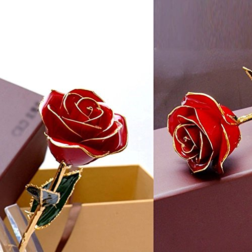 24k gold dipped real red rose flowerlove gift for girlfriend 24k gold dipped real red rose flowerlove gift negle Images